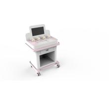 Portable Pelvic Floor Rehabilitation Device